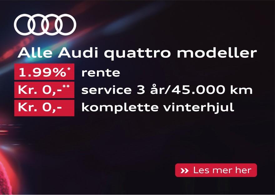 Audi quattro kampanjemodellar